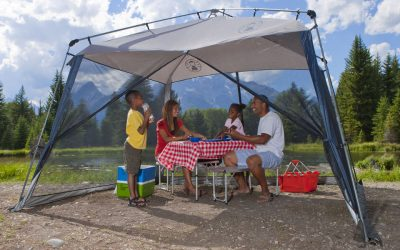 Mosquito net for Picnic/Tour